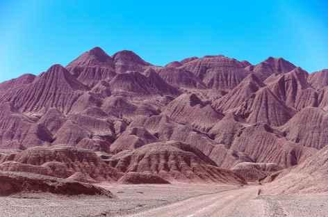 Entre Tolar Grande et San Antonio de los Cobres - Argentine -