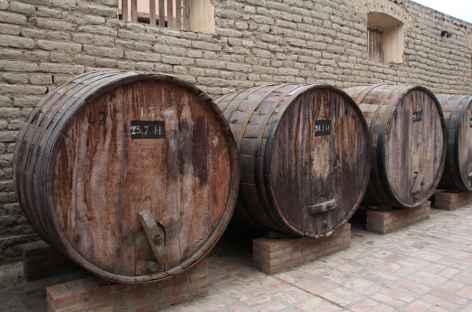 Visite-dégustation dans une bodega - Argentine -