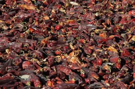 Séchage des poivrons -