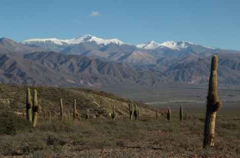 Le parc national Los Cardones et les Nevados de Cachi -