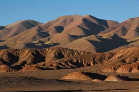 Dans la Puna - Argentine -