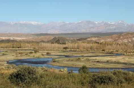 Argentine, vallée de Barreal -
