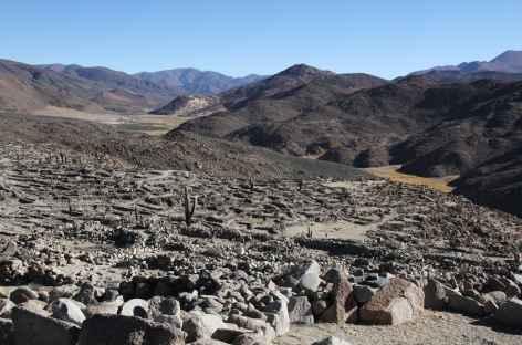 Argentine, site archéologique de Tastil -