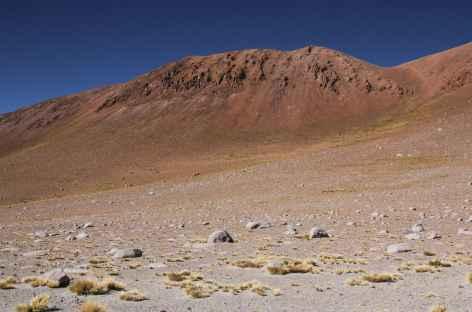 Argentine, paysage dans la Puna -