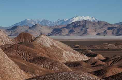 Argentine, paysage de Puna -