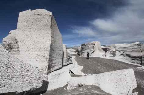Argentine, Campo de Piedra Pomez dans la Puna -