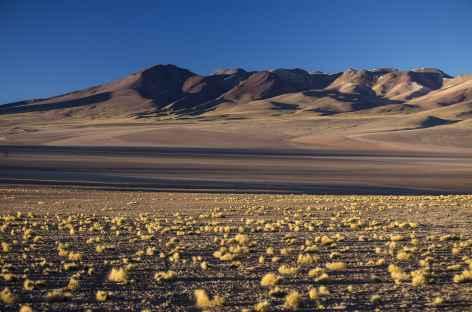 Lumière dans le sud Lipez - Bolivie -