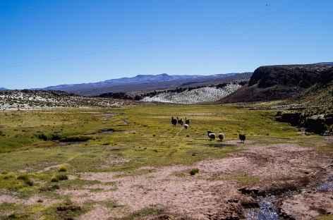 Entre Potosi et Uyuni - Bolivie -