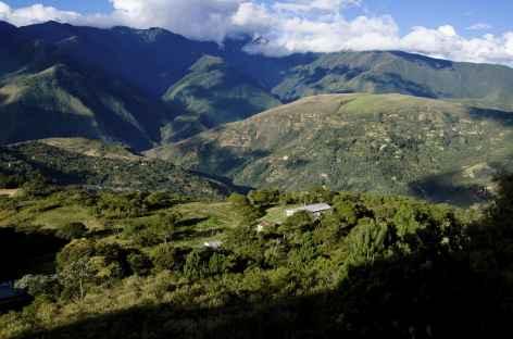 Yungas, dans les environs de Coroico - Bolivie -