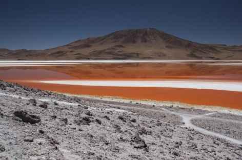 La laguna Colorada - Bolivie -