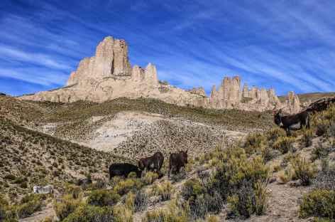 Balade sur le site de Ciudad Roma - Bolivie -