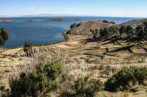 Lac Titicaca, marche vers Yampupata - Bolivie -