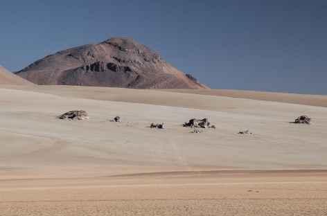 Le désert de Dali - Bolivie -