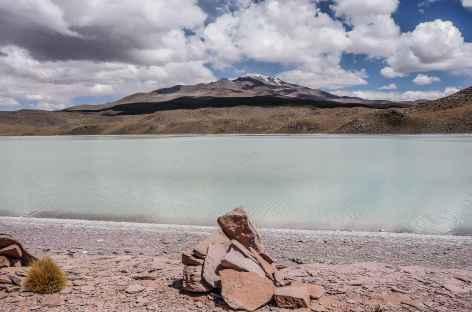 Entre Potosi et Tupiza - Bolivie -