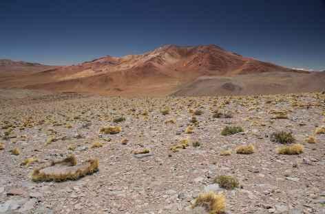 A l'approche de Quetena - Bolivie -