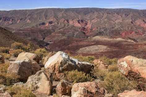 Entre Tupiza et Samawa - Bolivie -