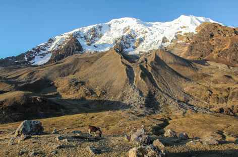 Panorama sur l'Illimani depuis le camp de base - Bolivie -