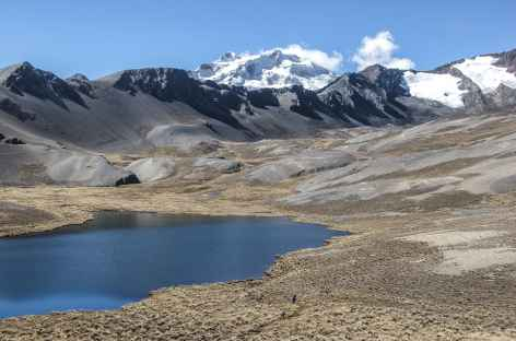Cordillère Royale, en direction de Chojna Khota - Bolivie -