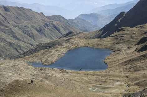 Cordillère Royale, en chemin vers le camp Lojena - Bolivie -