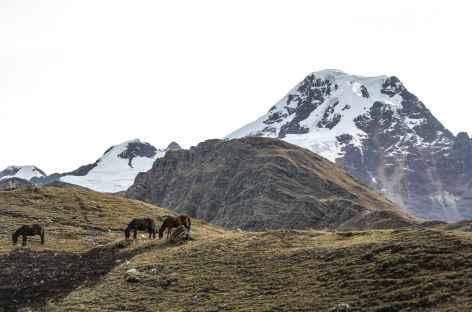 Vue sur l'Akamani depuis le village de Kanisaya - Bolivie -