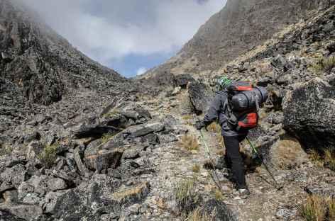 Dans la vallée au pied du col Bengala - Bolivie -