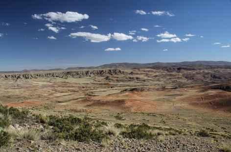 Sur la route entre la Cordillère Quimsa Cruz et La Paz - Bolivie -
