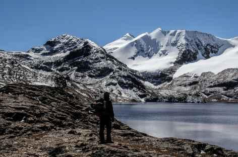 Instant de contemplation au bord de la lagune Huallatani - Bolivie -