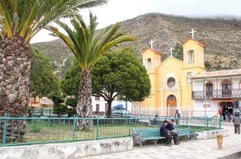 Des palmiers sur la place de Charazani - Bolivie -