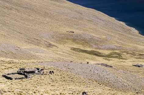 Cordillère Royale, hameau d'alpage au-dessus de la lagune Khotia - Bolivie -