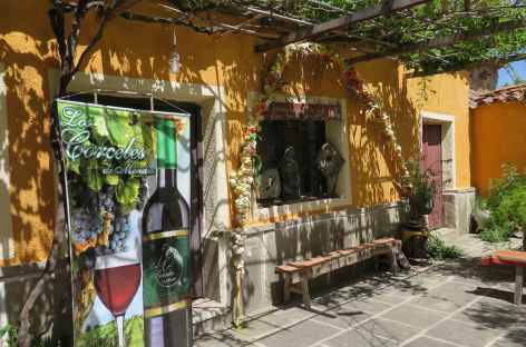 Bolivie, bodega à Tarija -