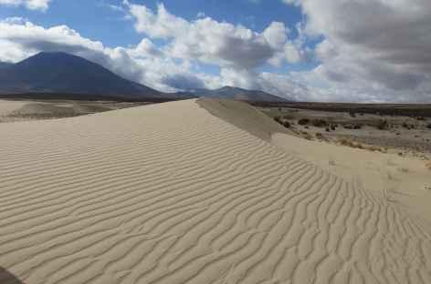 Bolivie, dunes dans la Cordillère Sama -