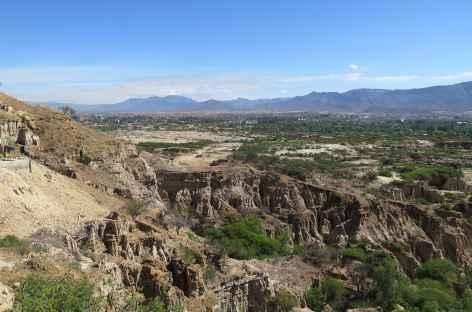 Bolivie, environs de Tarija -