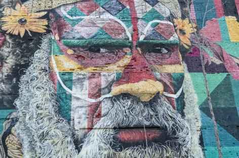Rio, fresque murale de Kobra - Brésil -