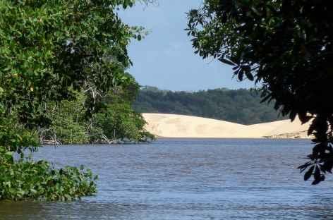 Dunes au bord du rio Preguiças - Brésil -