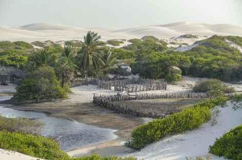 Oasis dans le parc national Lencois Maranhenses - Brésil -