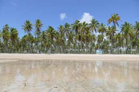 Plage sur l'île Boipeba - Brésil -