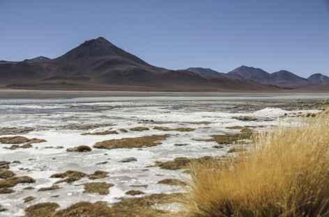 Laguna Blanca - Bolivie -