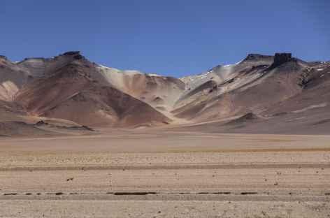 Désert de Dali - Bolivie -