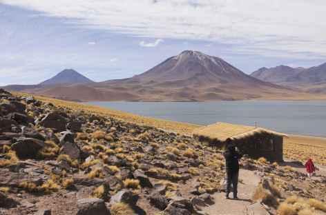 Lagunas Miscanti et Miniques- Atacama - Chili -