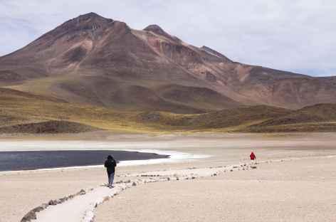 Lagunas Miscanti et Miniques - Atacama - Chili -