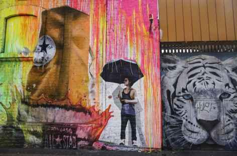 Fresque sur les murs de Santiago - Chili -