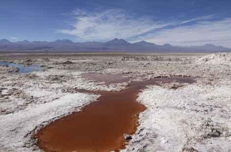 Laguna Chaxa - Atacama - Chili -