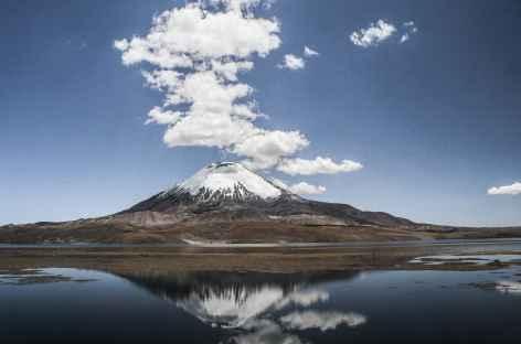 Parinacota sur fond de lac Chungara - Chili -