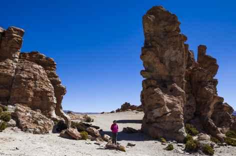 Vallée des rochers - Bolivie -
