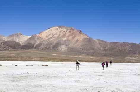 Salare de Surire - Bolivie -