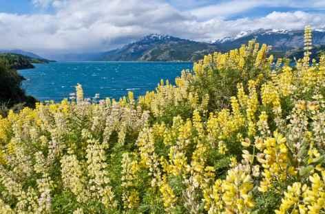 Trek vers le lac Léon - Chili -
