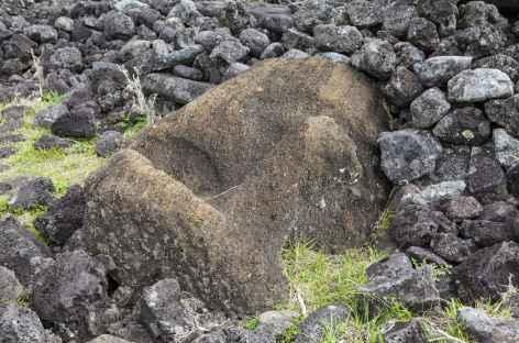 Ile de Pâques, tête de Moaï - Chili -