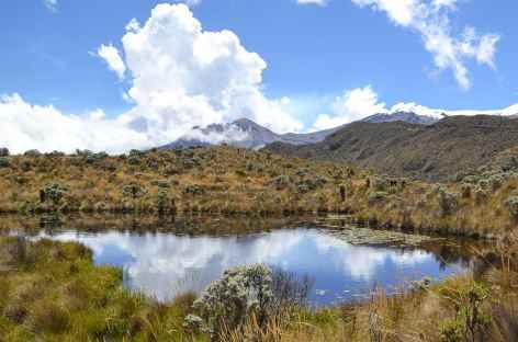 Lagune dans le parc national de Los Nevados - Colombie -