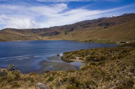Lagune et paramo dans le parc national Los Nevados - Colombie -