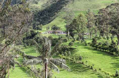Finca dans la vallée de Cocora - Colombie -